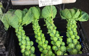 Eat Well - Brussell Sprouts